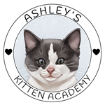 Ashley's Kitten Academy Logo