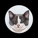 Ashley's Kitten Academy Logo