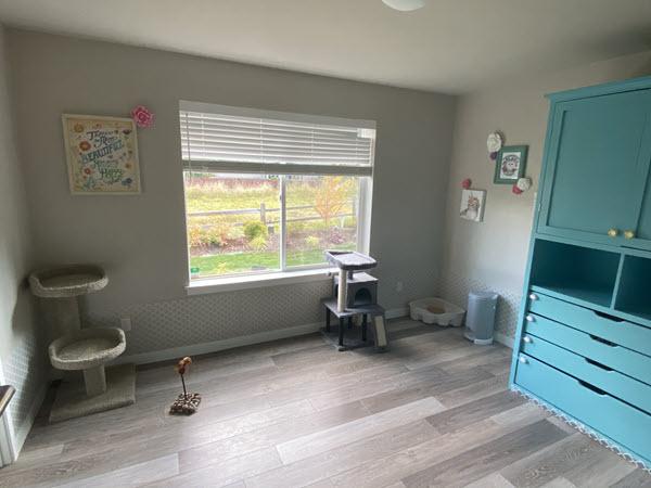 The Kitten Garden Foster Room